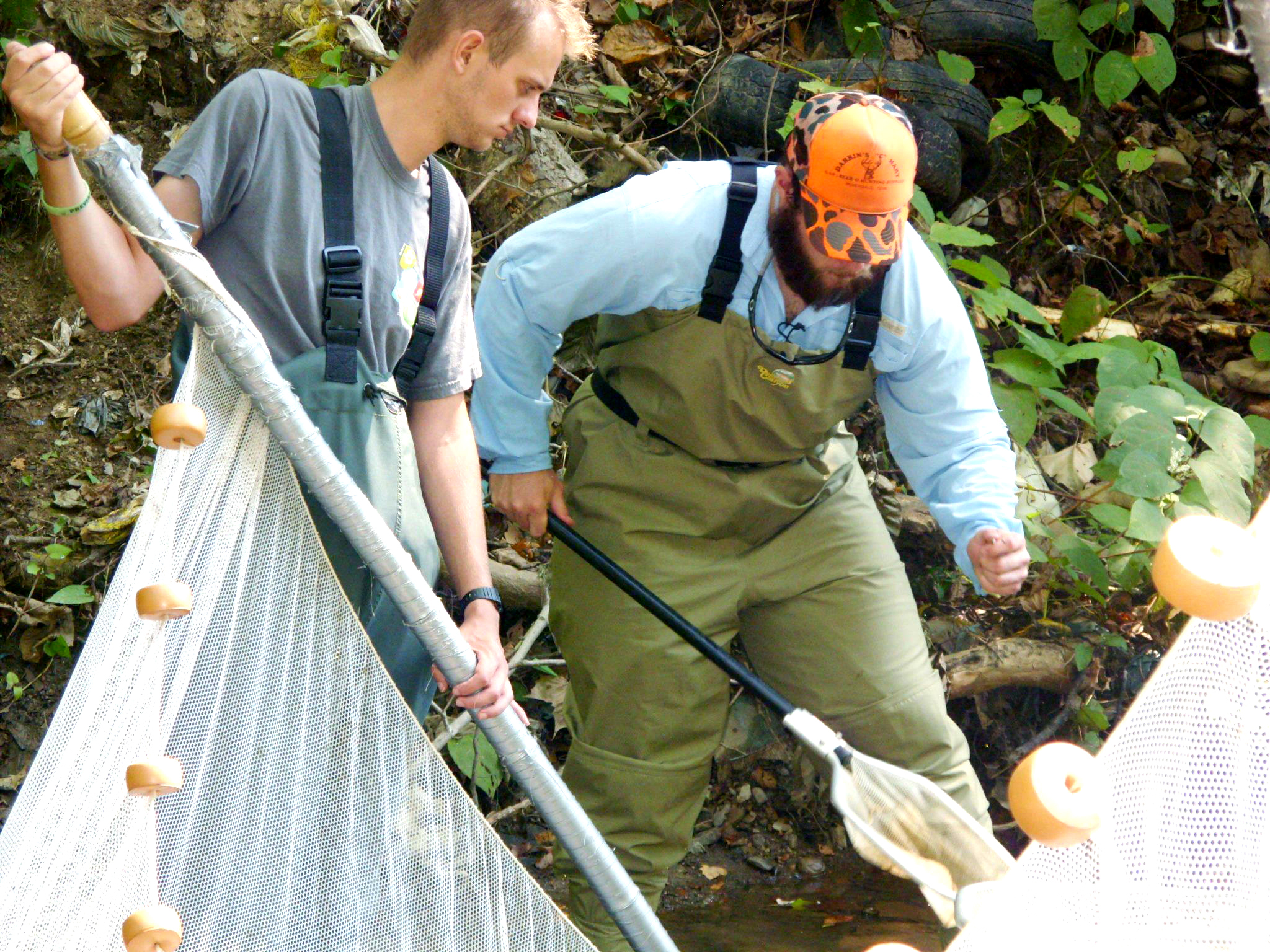 americorps member, Josh, wearing waders in a stream and holding a net to collect aquatic insects